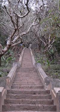 steps3913